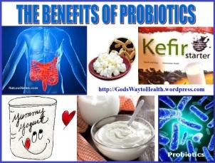 Probiotics collage