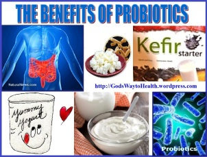 Probiotics collage