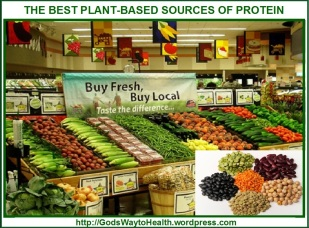 Best Plant-Based Protein Source