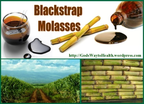 MOLASSES WS