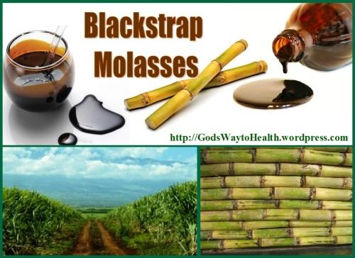 MOLASSES WS