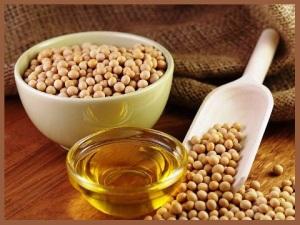 soybean oil  WS