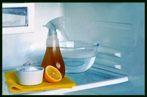 18 clean refrigerator with lemon