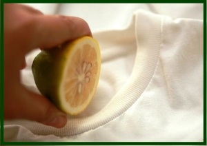 23 cleaning fabric with lemon