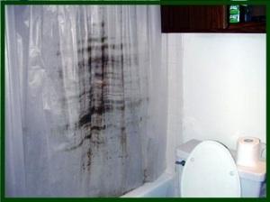5 shower-curtain-mildew